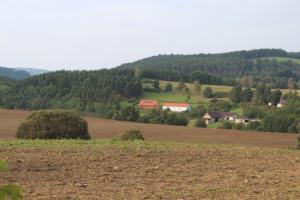 Country house - Slapy/Pazderny, Ferienhöfe  Žďár - big - 48