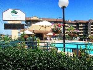 Arbors at Island Landing Hotel & Suites, Hotel  Pigeon Forge - big - 90