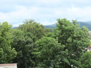 Arbors at Island Landing Hotel & Suites, Hotel  Pigeon Forge - big - 22