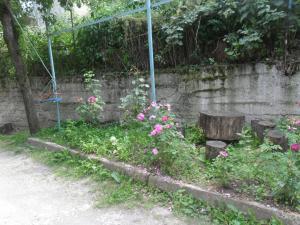 Elen, Vendégházak  Dilisan - big - 9
