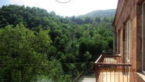 Hotel Hayq Armenia Dilijan, Vendégházak  Dilisan - big - 3