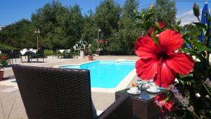 Villa Stari dvor, Hotels  Ugljan - big - 1