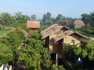 Omah Kecebong, Affittacamere  Yogyakarta - big - 11