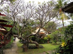 Bali Lovina Beach Cottages, Hotel  Lovina - big - 18