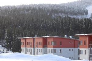 Studio Krušné Hory Klínovec, Apartmány  Loučná pod Klínovcem - big - 9