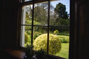 Luxury-dobbeltværelse med udsigt til haven
