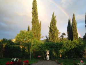 Casa Bella, Case di campagna  Cortona - big - 22