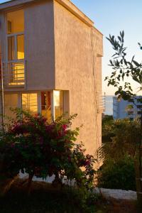 Villa Goxhi, Apartmanok  Borsh - big - 3