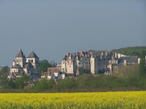 Gite Nuance, Case vacanze  Saint-Aignan - big - 10
