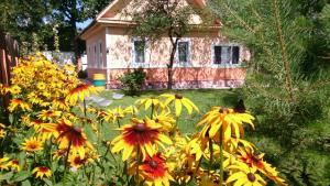 Гостевой дом, Витебск
