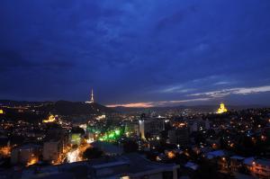 Hotel Tbilisi Apart, Aparthotels  Tbilisi City - big - 8