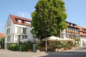 Hotel Weinstube Ochsen, Hotely  Štutgart - big - 1