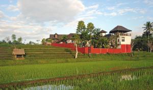 Balam Bali Villa, Penziony  Mengwi - big - 48