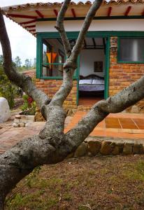 Villas de Sinaloa, Апарт-отели  Villa de Leyva - big - 17
