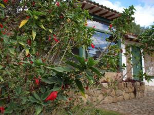 Villas de Sinaloa, Апарт-отели  Villa de Leyva - big - 9