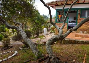 Villas de Sinaloa, Апарт-отели  Villa de Leyva - big - 5