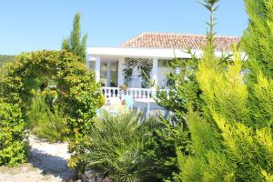 White House Villa, Vily  Budva - big - 27