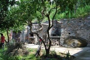 Al Melograno B&B, Bed & Breakfasts  Belmonte Calabro - big - 5
