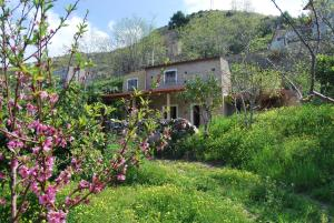 Al Melograno B&B, Bed & Breakfasts  Belmonte Calabro - big - 4