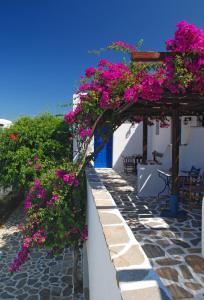 Alkyoni Beach Hotel, Hotely  Naxos Chora - big - 6