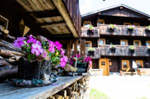 Residence Cavanis Wellness & Spa, Aparthotels  Sappada - big - 51
