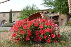 Casa Di Campagna In Toscana, Vidiecke domy  Sovicille - big - 78