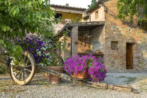 Casa Di Campagna In Toscana, Vidiecke domy  Sovicille - big - 116