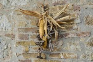 Casa Di Campagna In Toscana, Vidiecke domy  Sovicille - big - 81