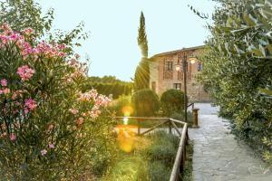 Casa Di Campagna In Toscana, Vidiecke domy  Sovicille - big - 80