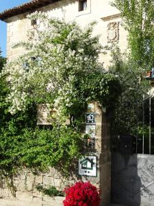Palacio de Riezu, Guest houses  Riezu - big - 31