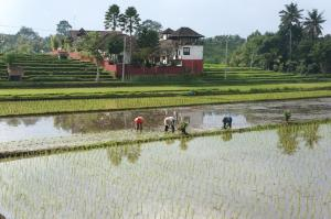 Balam Bali Villa, Penziony  Mengwi - big - 47