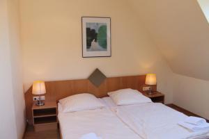 Hotel Schiller, Hotely  Freiburg im Breisgau - big - 6