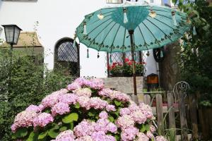 Haus Feuchtl, Affittacamere  Purkersdorf - big - 27