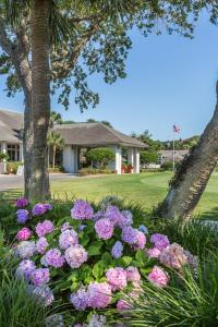Sea Palms Resort & Conference Center, Resorts  Saint Simons Island - big - 3