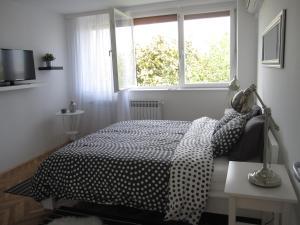 Apartment LIN, Апартаменты  Загреб - big - 15