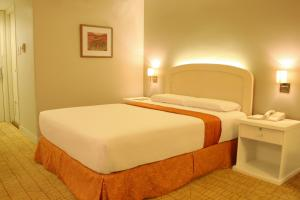 Riviera Mansion Hotel, Hotels  Manila - big - 23