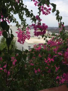 Patmos Villas, Ferienwohnungen  Grikos - big - 81