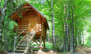 Dobrica Hunting Lodge, Lodges  Bixad - big - 15
