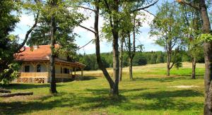 Dobrica Hunting Lodge, Lodges  Bixad - big - 11