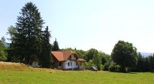 Dobrica Hunting Lodge, Lodges  Bixad - big - 4