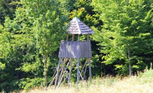 Dobrica Hunting Lodge, Lodges  Bixad - big - 16