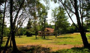 Dobrica Hunting Lodge, Lodges  Bixad - big - 12