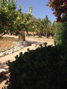 Villa Musuri, Vily  Mochlos - big - 33