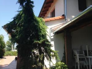 Boglárka Vendégház, Vendégházak  Balatonboglár - big - 26