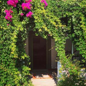 Patmos Villas, Апартаменты  Грикос - big - 150