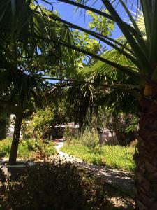 Patmos Villas, Апартаменты  Грикос - big - 149