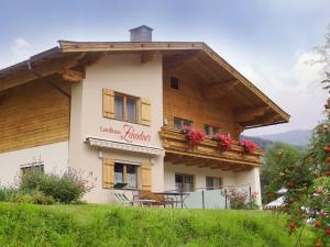 Landhaus Zehentner, Appartamenti  Saalbach Hinterglemm - big - 12