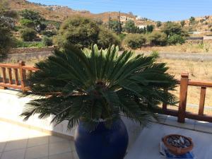 Patmos Villas, Ferienwohnungen  Grikos - big - 166