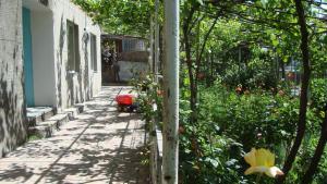 Guesthouse Valeria, Ostelli  Borjomi - big - 5