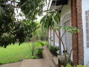 Longonot Guest House, Pensionen  Lilongwe - big - 50